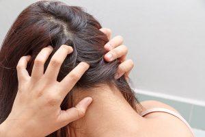 pass a hair follicle drug test guaranteed